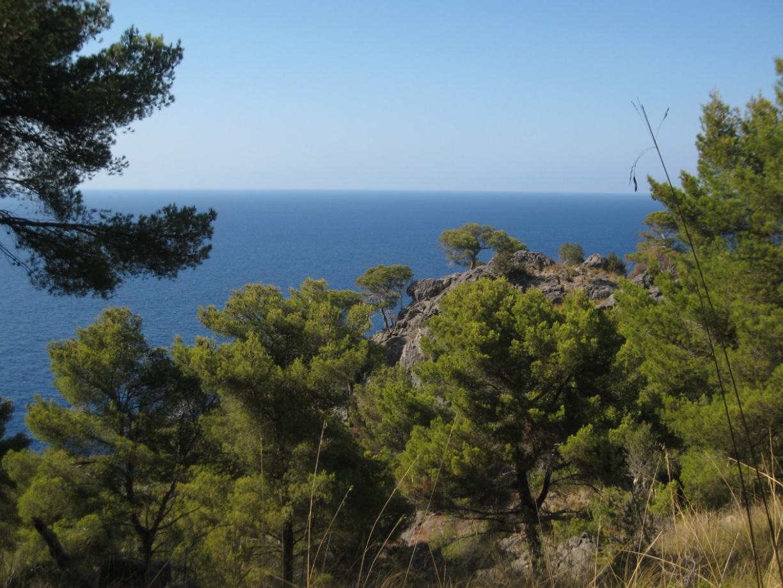 Natur an Pfingsten auf Mallorca
